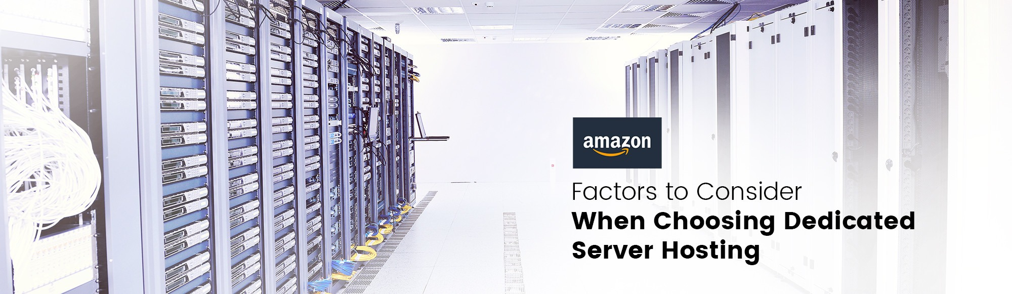 Factors to Consider When Choosing Dedicated Server Hosting