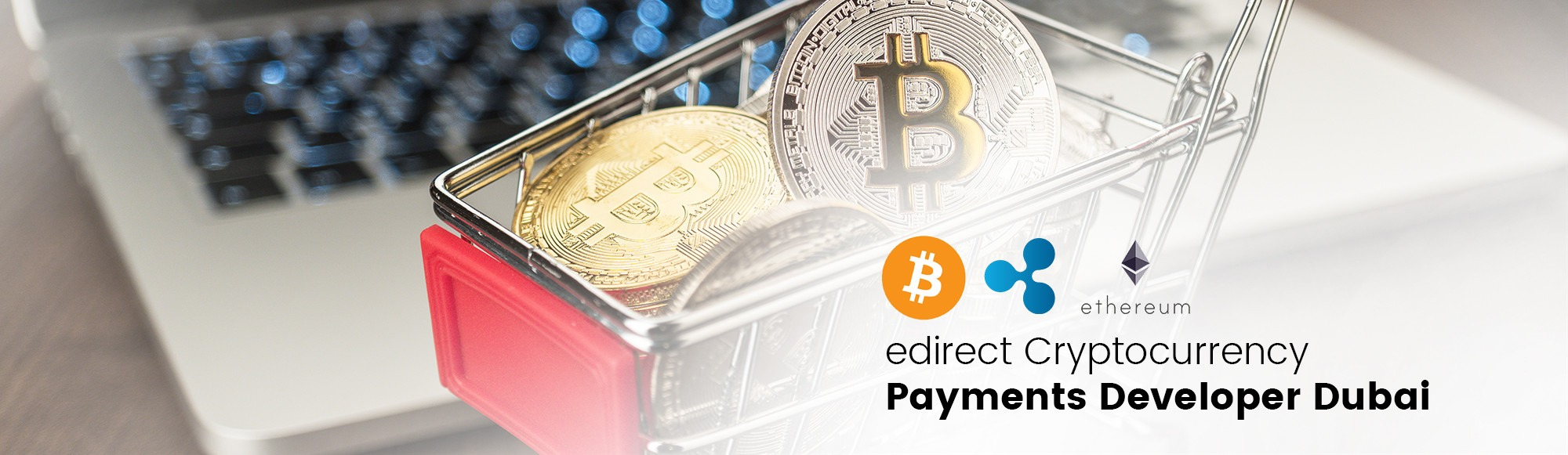 edirect Cryptocurrency Payments Developer Dubai