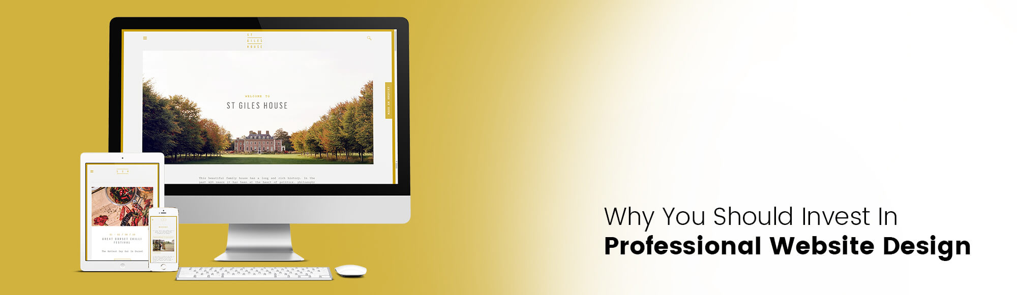 Sites produced by professional website designers.