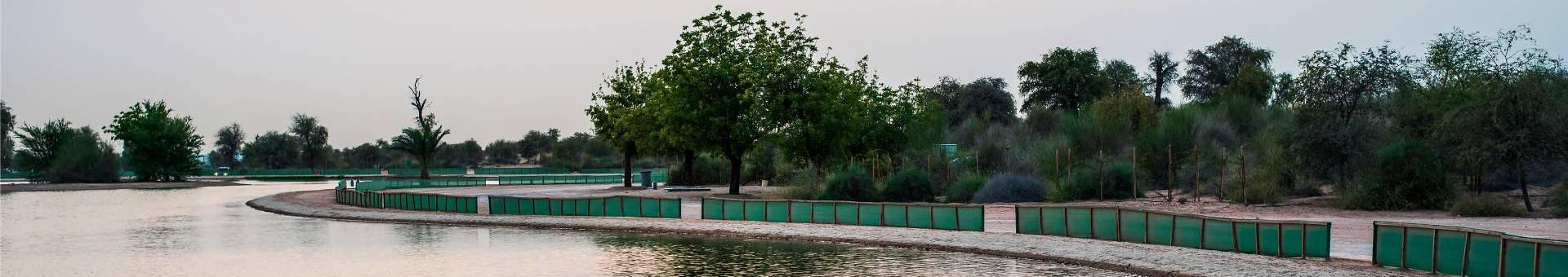 al qudra lakes